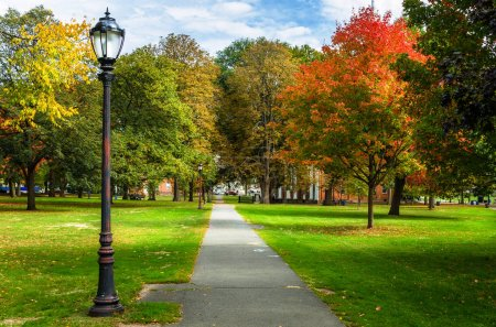 Photo for Narrow Straight Paved Footpath Lined with Old Fashioned Street Lights and Colourful Autumnal Trees in a Public Park. New Haven, CT. - Royalty Free Image