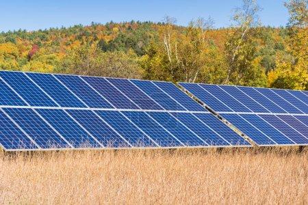 Foto de Vista de los paneles solares para la generación de electricidad en un campo con una colina cubierta de coloridos árboles de otoño en el fondo en un día soleado - Imagen libre de derechos