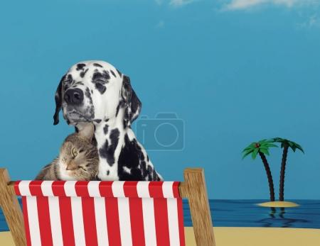 Cute dog and cat relaxing on a red deck chair on the beach