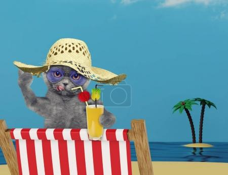Cute cat relaxing with juice on the beach