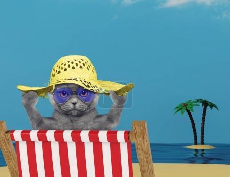 Cute cat relaxing on a red deck chair on the beach
