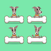 Cartoon character greyhound dog with big bones
