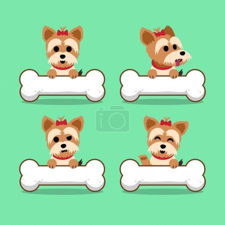 Set of cartoon character yorkshire terrier dog with big bones
