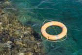 Linea di vita in mar rosso vicino alla barriera corallina