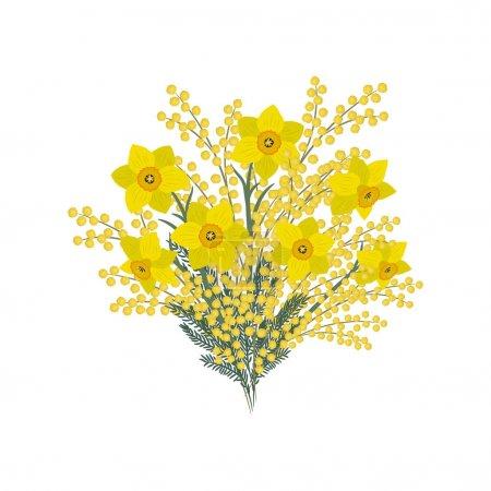 Illustration pour Bouquet de jonquilles et de mimosa sur fond blanc. Fleurs jaunes printanières. Composition florale. Illustration vectorielle . - image libre de droit