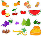 Fruit icons: healthy vegetal food for good diet