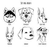 Set dog head 4