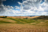 Landscape near Asciano Siena. gold wheat field and blue cloudy sky. Tuscany, Italy.