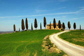 PIENZA, TUSCANY / ITALY - MAR 31, 2017: tuscany landscape, farmland I Cipressini, italian cypress trees with tree in bloom and rural white road in spring, green fields. Located in Siena countryside.