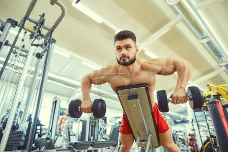 Photo for Bodybuilder does exercises with dumbbells in the gym. - Royalty Free Image