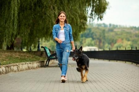 Photo pour Une jeune fille marche avec un chien de berger allemand dans le parc . - image libre de droit