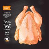 chicken meat vector