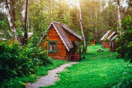 Pequeña casa de madera en el bosque soleado del distrito de Altay