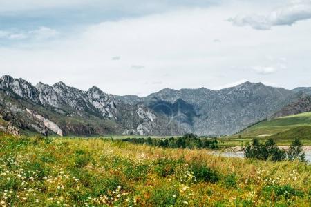 Beautiful mountain scenery on sunny summer day: me...