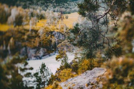 True tilt-shift shooting of autumn landscape in Al...