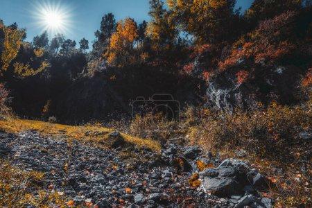 skynextphoto
