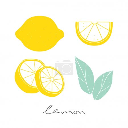 Illustration for Hand drawn sliced lemon. Kitchen illustration on the white background - Royalty Free Image