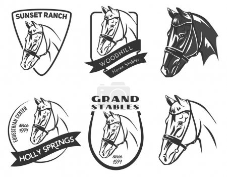 Set of horse head logo, badges and emblems.