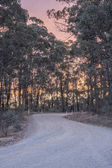 Australian unsealed country road during sunset