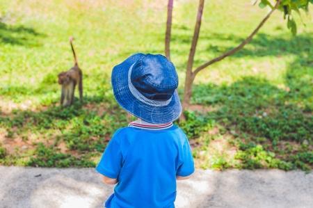 Boy looks at a monkey.