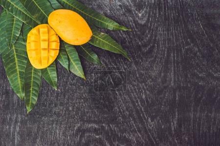 Mango and mango leaves