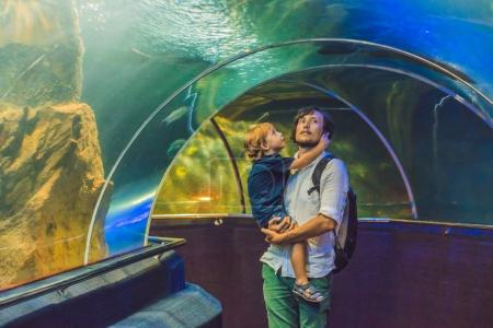 Father and son looking at the fish
