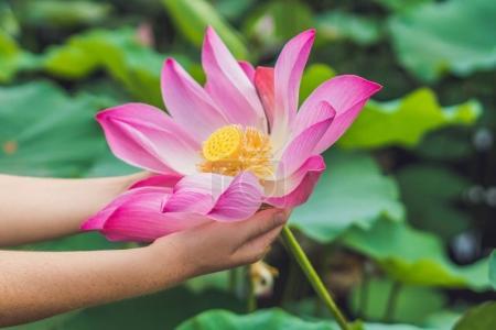 Photo pour Photo de femme avec la fleur de lotus en mains. - image libre de droit