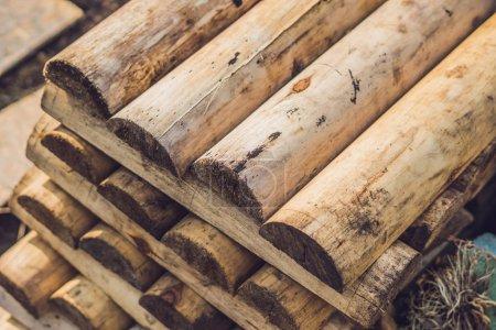 Photo pour Plié dans les planches de hêtre beige sur pieux en bois, fond de barres asymétriques dans une scierie. Scié conseils. - image libre de droit
