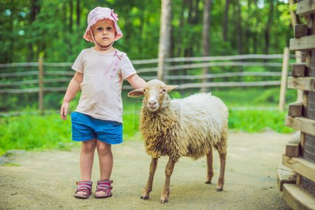 little girl with lamb on the farm.