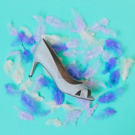 silver shoe  among the feathers