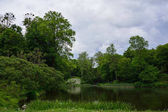 Spring landscape with pond, green grass and trees. Park
