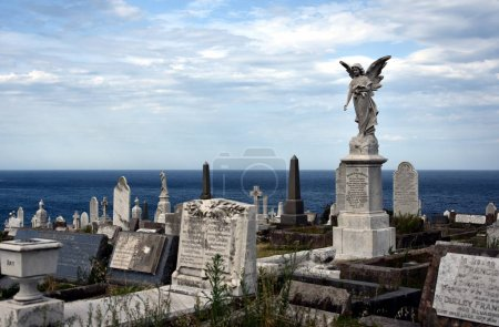 Waverley Cemetery is a state heritage listed