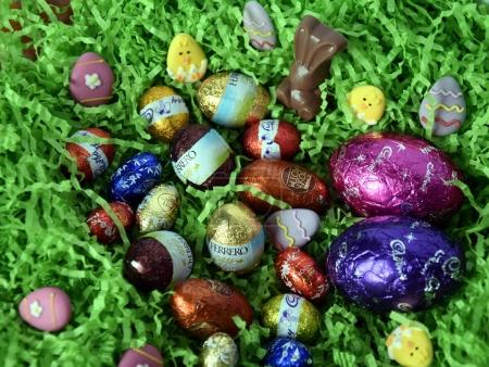 chocolate eggs and bunnies