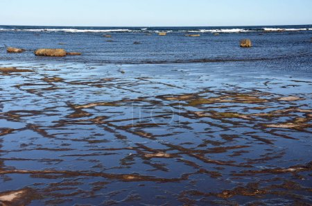 Low tide at Long Reef Headland