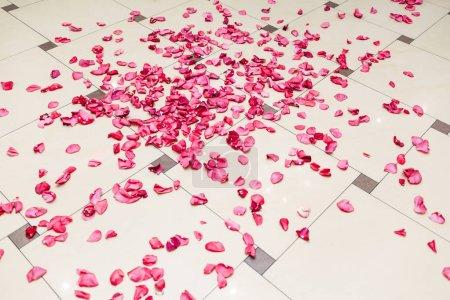 Closeup shot of bright pink rose petals scattered on tiled floor