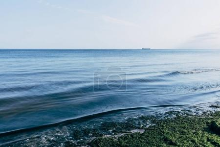 horizon of blue sea