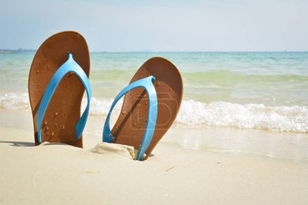 Blue sandal on the beach