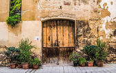 Old wooden gates in Spain