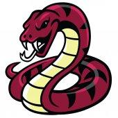 Snake Mascot Vector