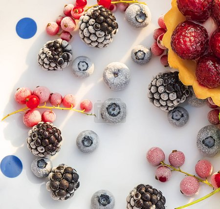 Various berries in a frost