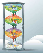 hourglass landscape design set with Winter, Spring, Summer, Autu