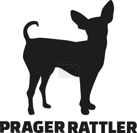 Prague ratter with german breed name