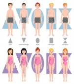 Vector illustration of different body shape types