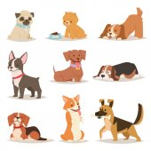 Funny cartoon dogs characters different breads illustration