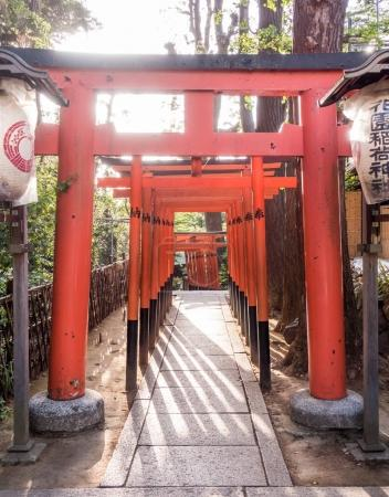 The Red wooden gate passage for Toshogu shrine in Ueno park.