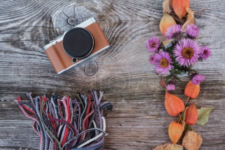 stylish camera on a wooden Board with autumn colors