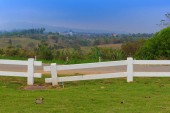White fence on green lawn