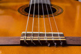 Classical guitar and strings and the bridge.