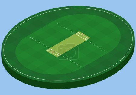 Isometric field for cricket, isolated image