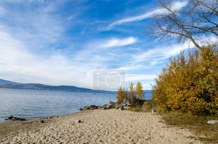 Shore of Lipno Lake